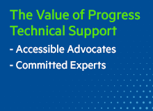 PROGRESS Technical Support